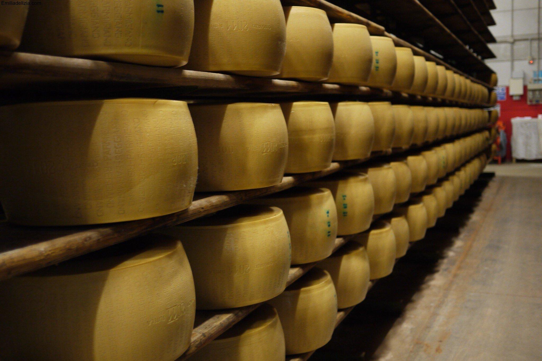 ageing Parmesan cheese