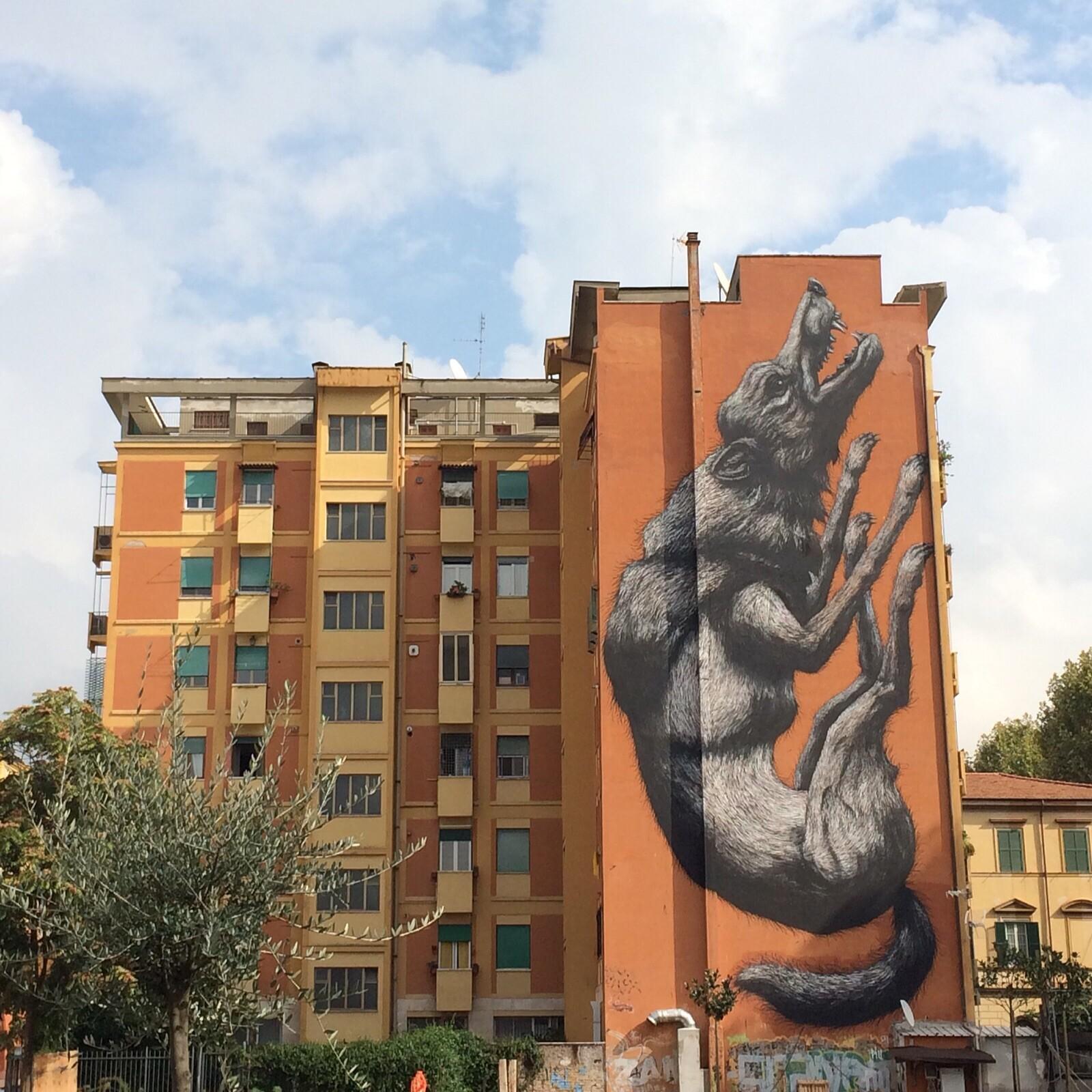 Roa graffiti in Testaccio Rome